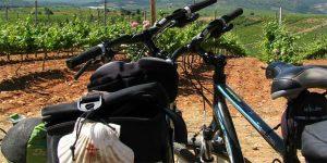 Camino Fisterra en bici