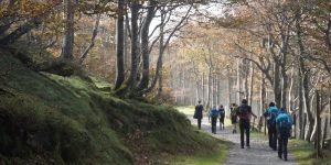 group-walking-camino-the-pyrenees-section-caminoways