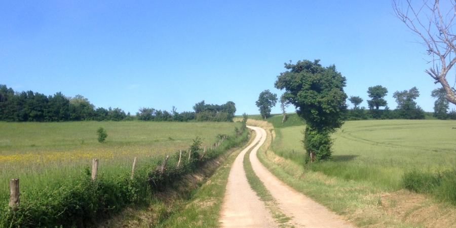 walk-the-arles-way-camino-de-santiago-caminoways