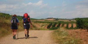 walking-the-Top-camino-routes-2021-caminoways.com