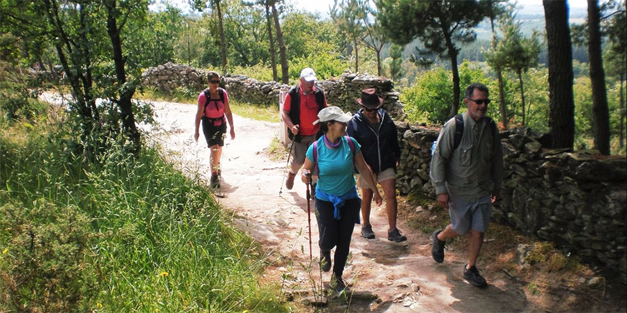 Classic Camino GUIDED