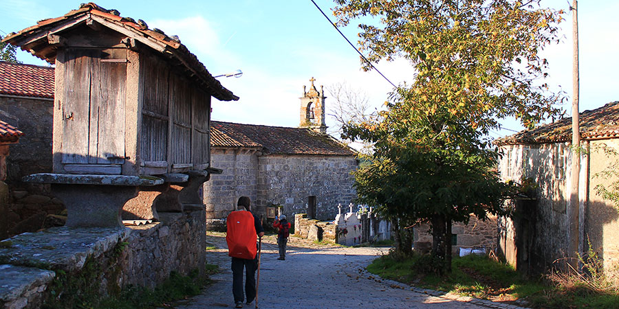 Classic Camino Solo Traveller GUIDED