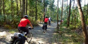 Cycling the Camino Frances