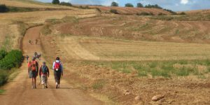 Benefits-of-Walking-Camino