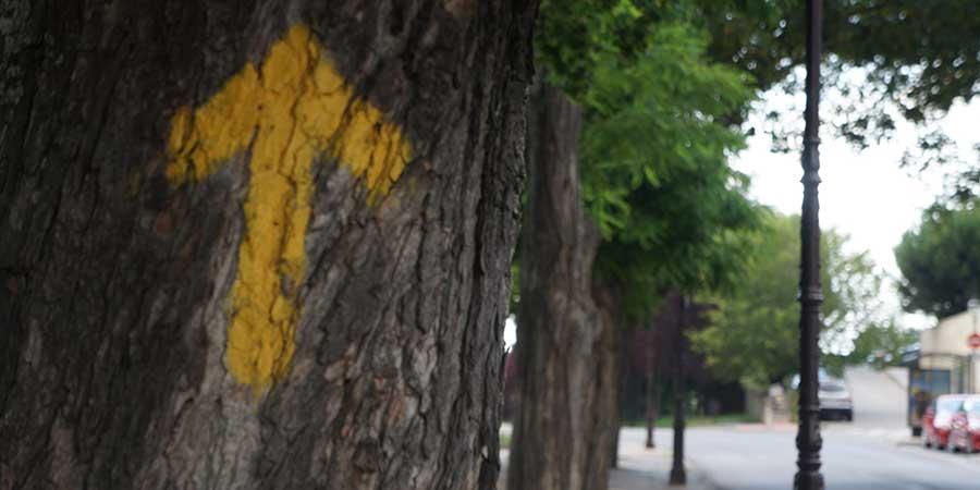 yellow-arrows-from-burgos-camino-de-santiago-spain