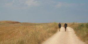 What is the Via de la Plata?
