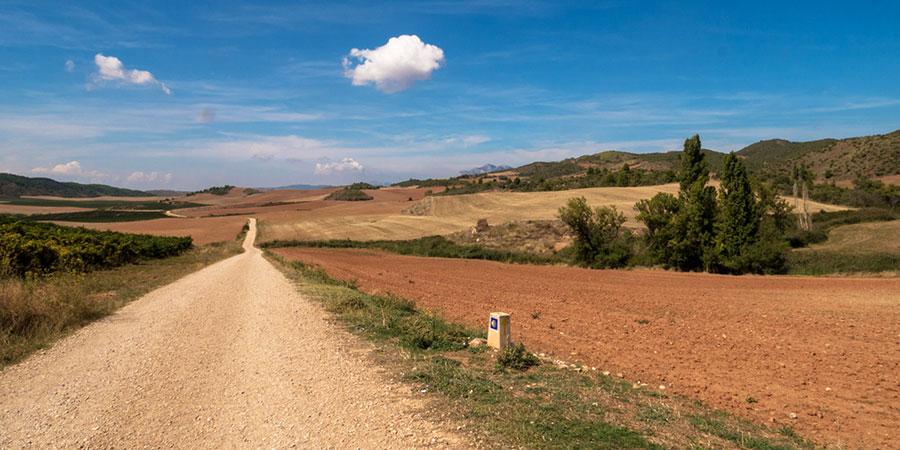 meseta-trail-landscape-camino-de-santiago-caminoways
