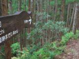 koguchi-kumano-kodo-japan-camino-ways