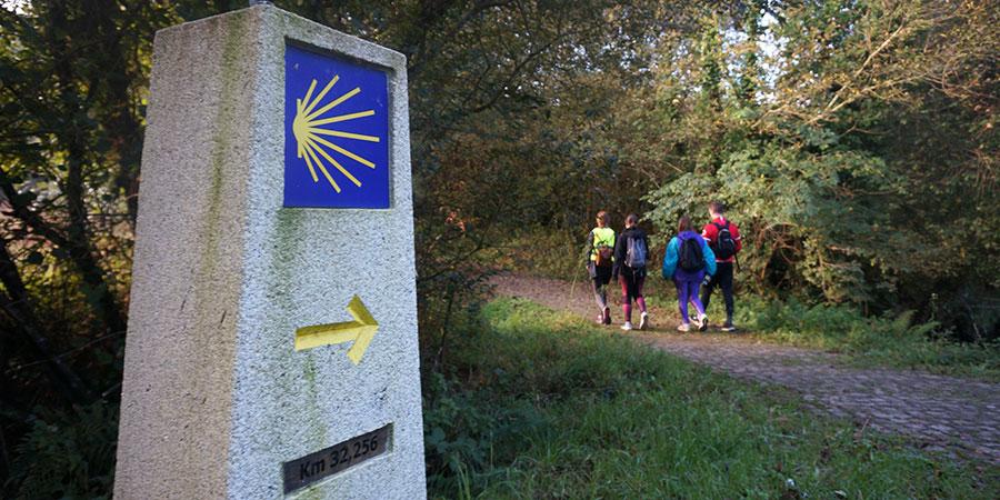 pilgrims-camino-ingles-trail-camino-de-santiago-caminoways