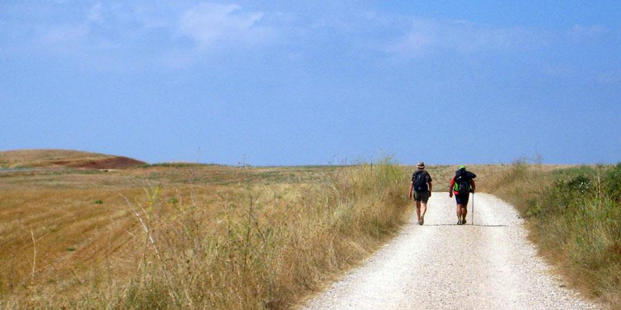 The Scallop Shell And The Camino De Santiago Caminoways