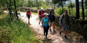 group-walking-camino-de-santiago-caminoways