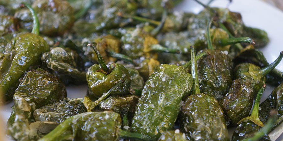 padron-peppers-vegan-camino-de-santiago-caminoways