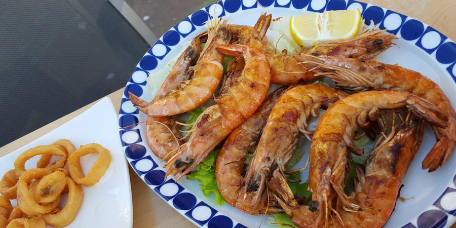 taste-seafood-camino-de-santiago-portugues