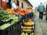 mercado-abastos-santiago-compostela-food-market-caminodesantiago-caminoways