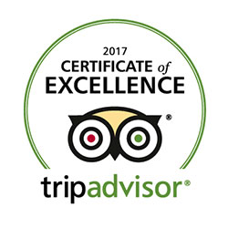tripadvisor-certificate-of-excellence-caminoways-2018