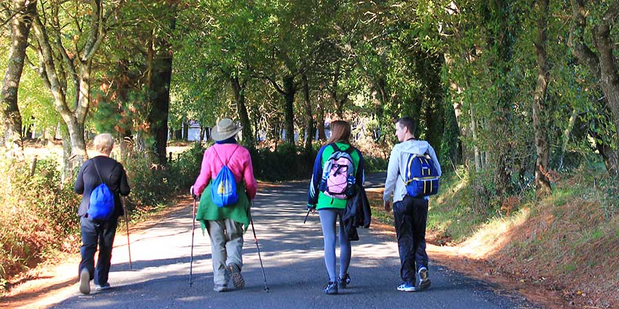 group-walking-the-camino-in-winter-caminoways