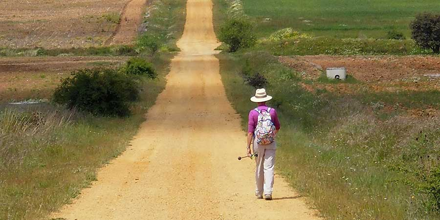 can-i-walk-the-camino-on-my-own-camino-ways