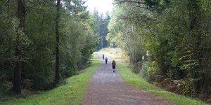 Camino desde Vilalba