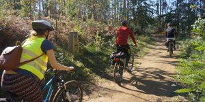 how-to-prepare-for-cycling-the-camino-de-santiago-caminoways