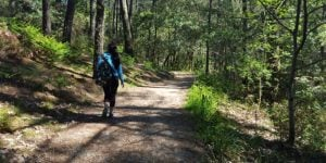 mindful-walking-camino-de-santiago