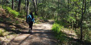 mindful-walking-camino-de-santiago