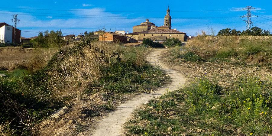 landscape-camino-frances-camino-de-santiago-caminoways
