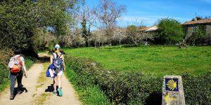 Via Francigena desde Viterbo