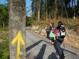 walking-the-camino-de-santiago-silver-surfers-discount-caminoways