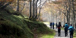 walking-the-camino-de-santiago-for-charity-caminoways
