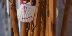scallop-shell-camino-de-santiago-caminoways