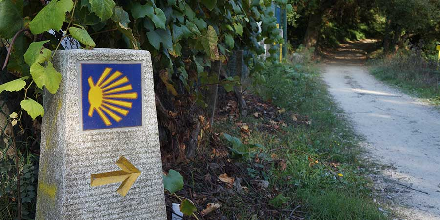 technology-free-camino-follow-the-signs