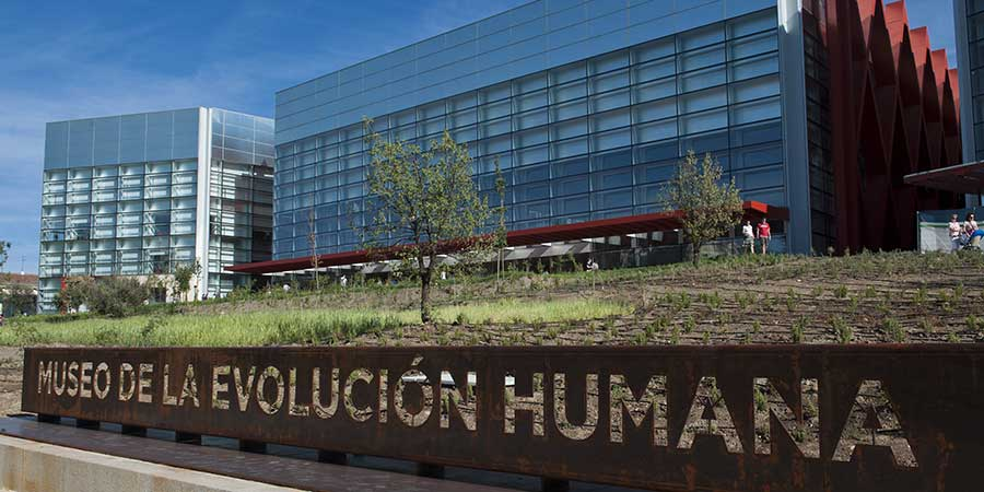museum-for-human-evolution-camino-de-santiago-caminoways