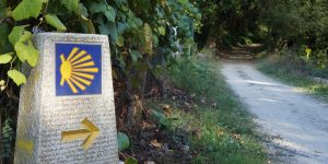 What-is-the-camino-caminoways
