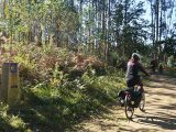cycling-the-camino-de-santiago-ebike-caminoways
