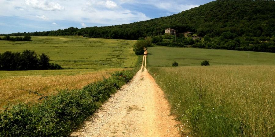 walking-in-tuscany-trails-via-francigena-camino-to-rome