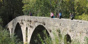 bridge-on-the-camino-from-st-jean-pied-de-port-caminoways