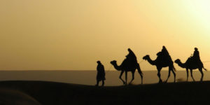 camels-camino-christmas-traditions-caminoways
