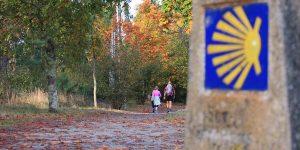 Autumn-Camino-guided-tours-caminoways Autumn on the Camino