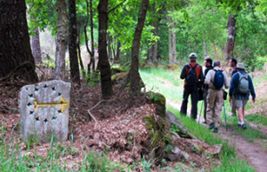 Camino-Guided-Tours-2016---Caminoways.com