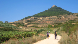 Camino-de-Santiago-French-Way-Camino-Ways