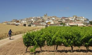 Cirauqui village