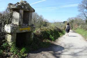 Niamh-walking---Caroline-on-the-CAmino---Caminoways.com