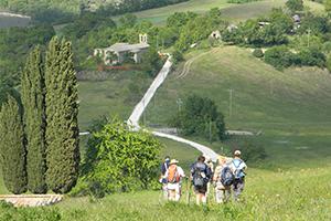 Pieve-di-Coccorano-st-francis-way-francigenaways-holy-year-pilgrim