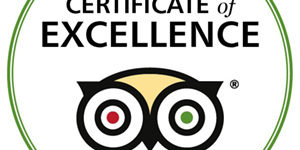 TripAdvisor certificate of excellence CaminoWays 2016