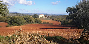 Tuscany-countryside-cycling-Via-francigena