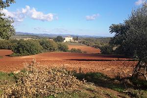 Tuscany-countryside-cycling-Via-francigena
