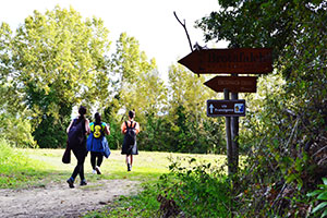 Via-Francigena-14-from-San-Miniato-FrancigenaWays.com