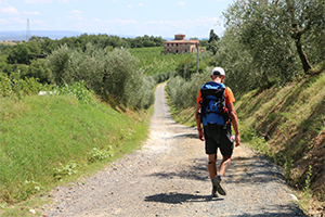 Via-francigena-doc-walking