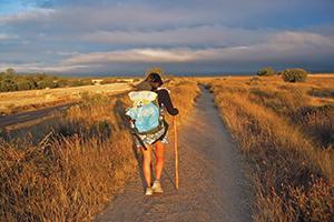 Walk-Camino-de-Santiago-Camino-Ways