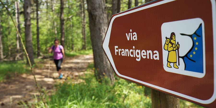 forest-sign-walking-via-francigena-italy-caminoways